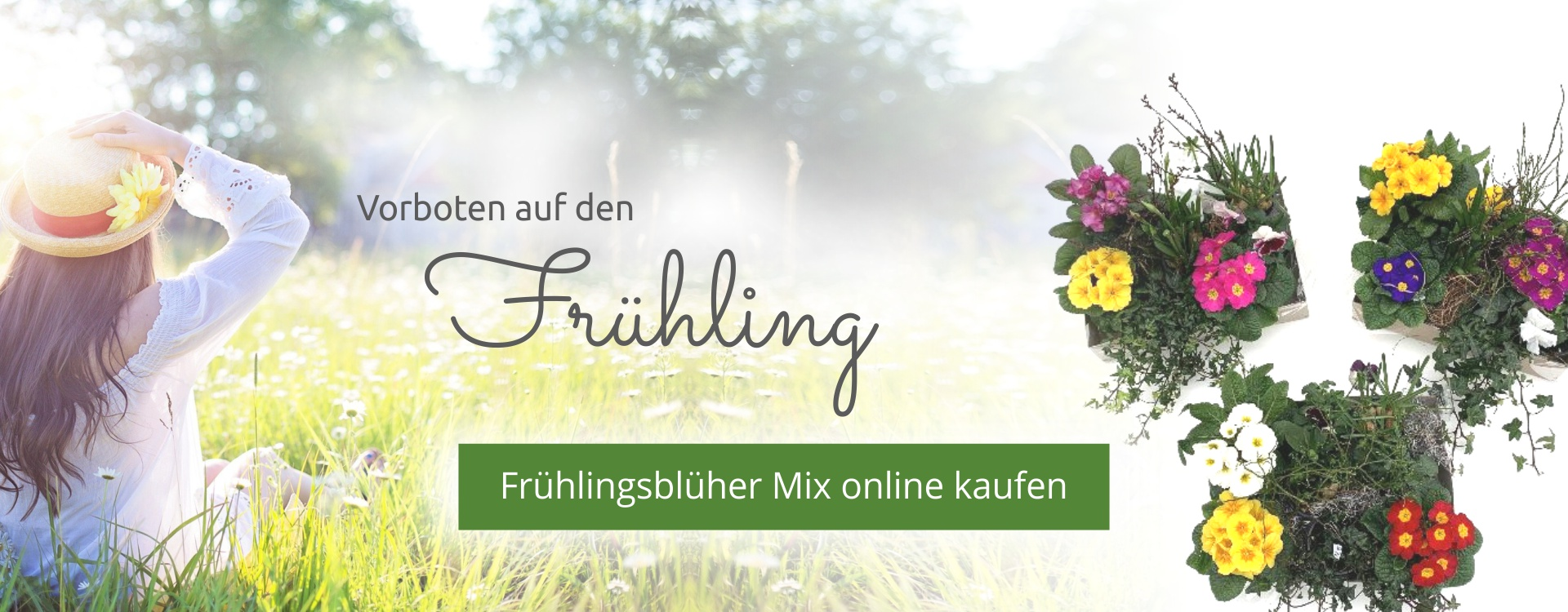 Frühlingsvorboten,Frühlingsschalen1920x750