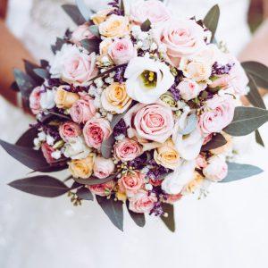bloom-blooming-blossom-1424810_AndreasWohlfahrt_PEXELS
